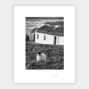 Donegal coastline and cottage