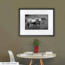 Load image into Gallery viewer, Horse & Foal