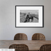 Load image into Gallery viewer, Two donkeys