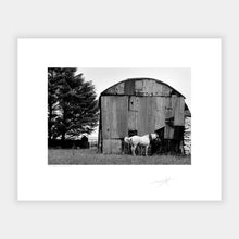 Load image into Gallery viewer, Horses Barn