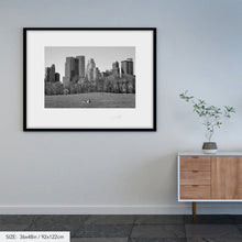 Load image into Gallery viewer, Central Park