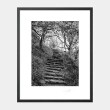 Load image into Gallery viewer, Lough Hyne steps