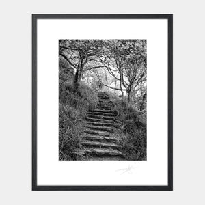 Lough Hyne steps
