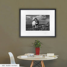 Load image into Gallery viewer, West Cork Sheep