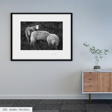 Load image into Gallery viewer, Wicklow sheep