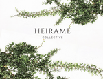 Load image into Gallery viewer, Heiramé Gift Card