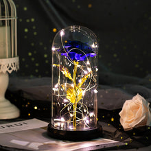 Load image into Gallery viewer, Enchanted Forever Rose Flower in Glass LED Light Christmas Decoration