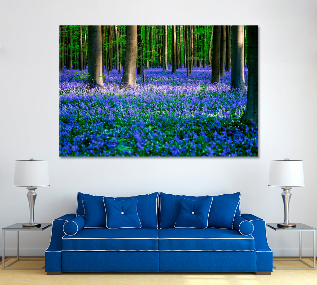 Bluebells in Forest Hallerbos Belgium