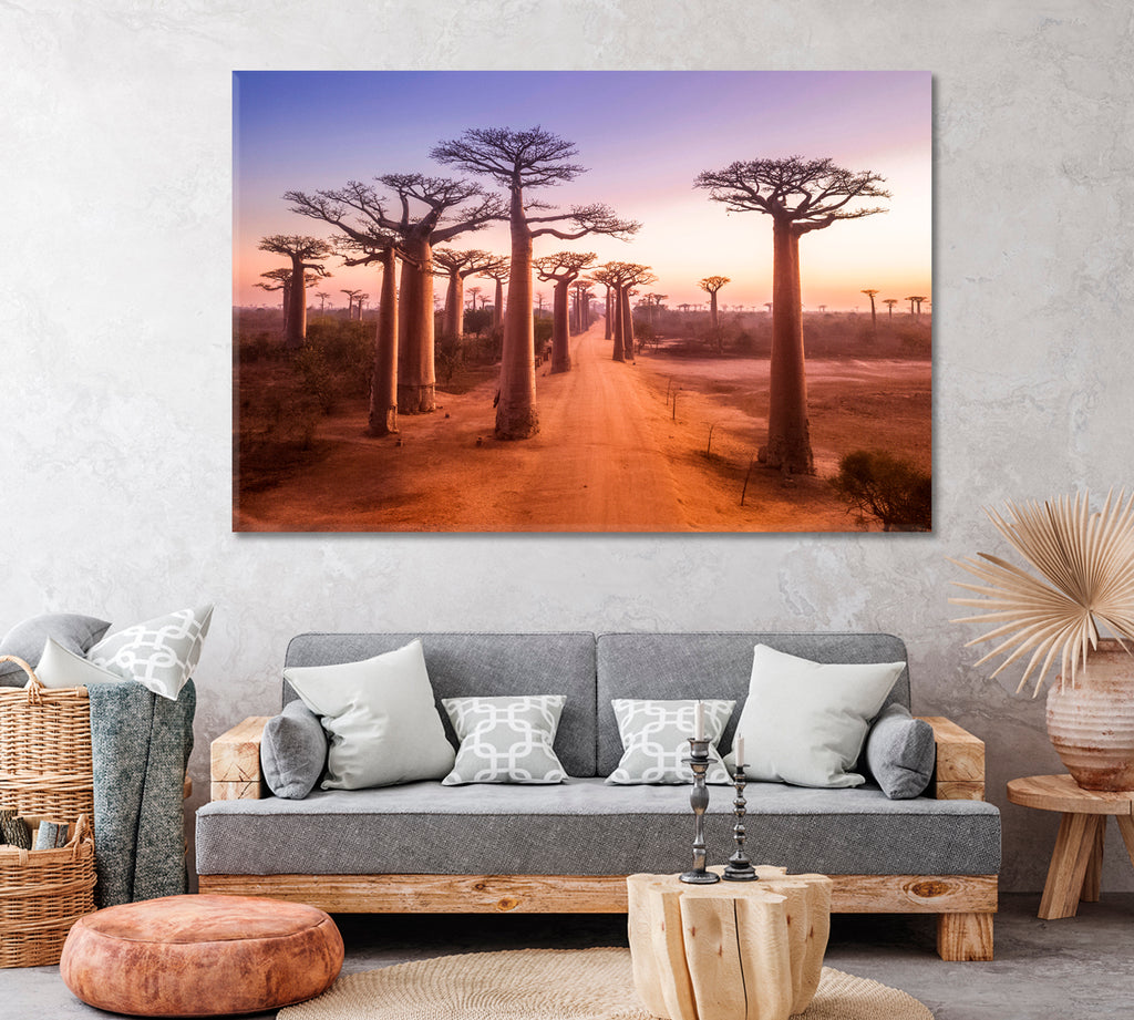 Avenue of Baobabs Madagascar