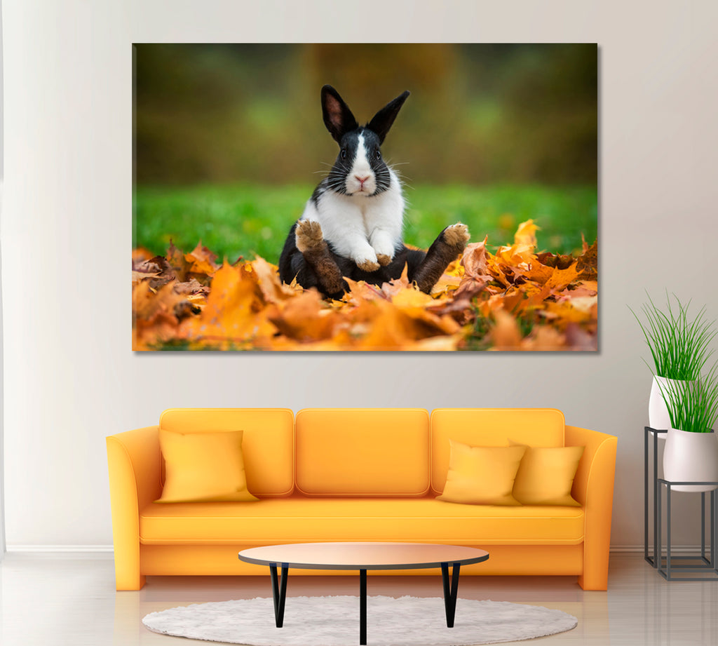 Rabbit Sitting in Autumn Leaves