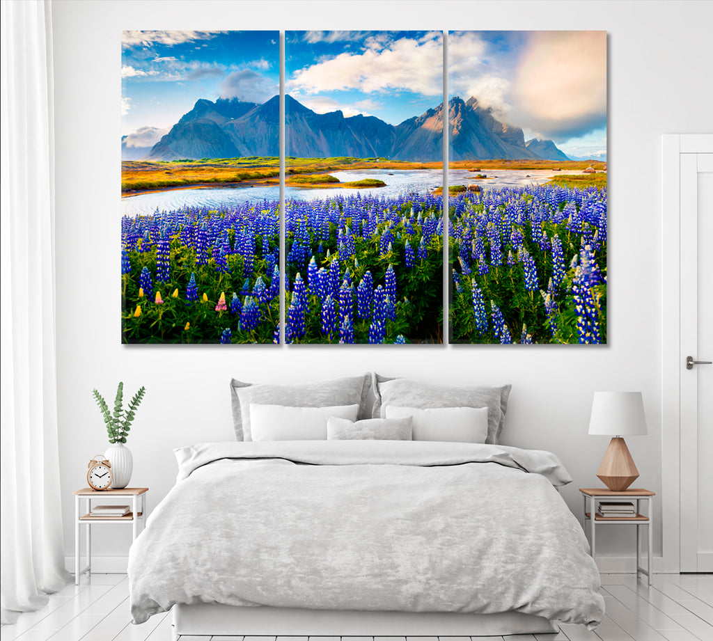 Vestrahorn Mountain and Beautiful Lupine Flowers Iceland
