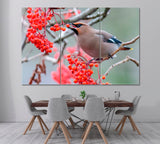 Bohemian Waxwings Bird Eating Rowan Berries