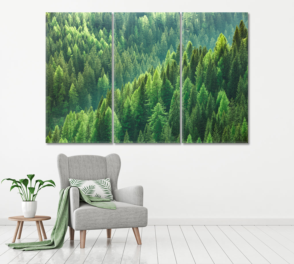 Green Forest of Fir and Pine Trees