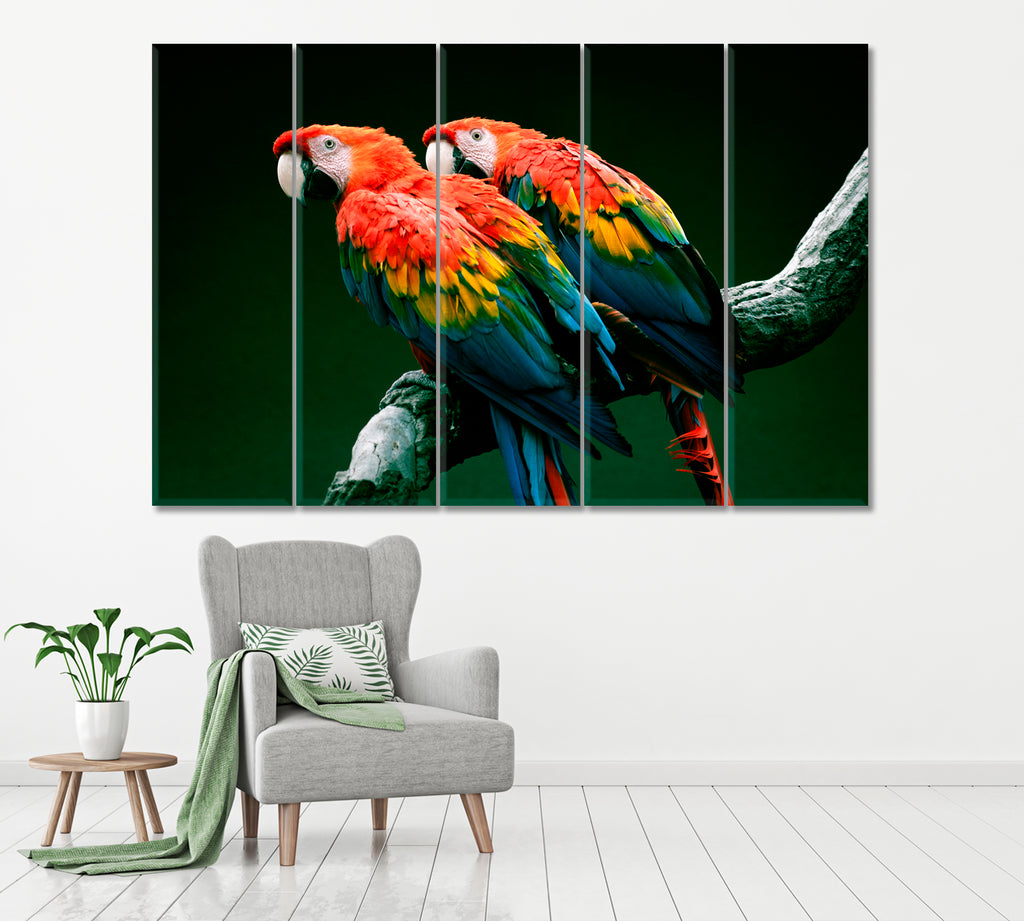 Pair of Red-and-Green Macaw Parrot
