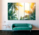 Tropical Palm Tree with Sun Light