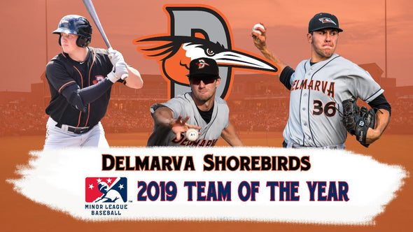 2019 MiLB Team of the Year