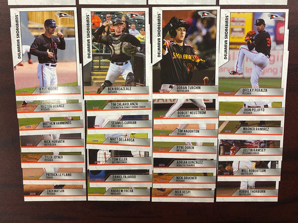 Delmarva Shorebirds 2019 Team Card Set