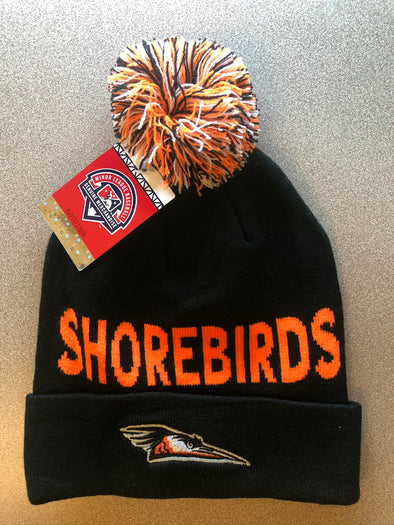 2019 Delmarva Shorebirds Beanie
