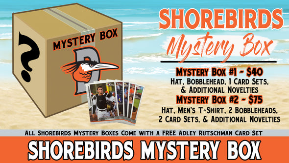 Delmarva Shorebirds Mystery Box #1