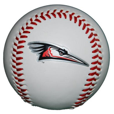 Delmarva Shorebirds Primary Logo Baseball