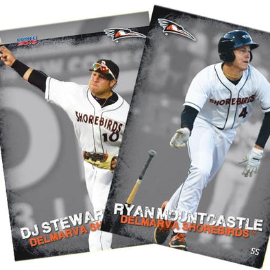 Delmarva Shorebirds 2016 Team Card Set