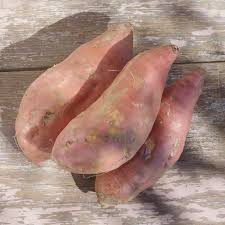 Beauregard Sweet Potatoes, 5