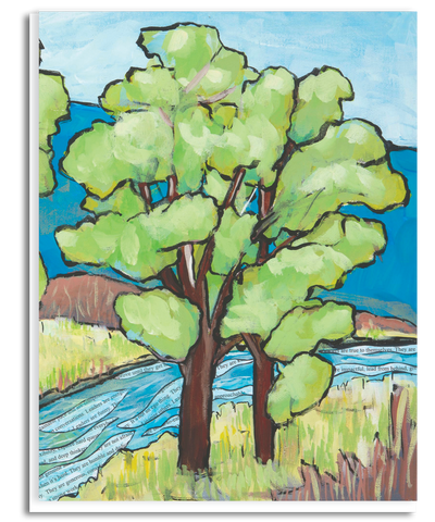 Cottonwood Greeting Card