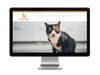 Cat Drop Shipping Products Store
