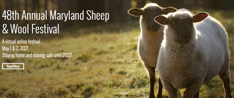All the fun things @ Maryland Sheep and Wool this weekend!