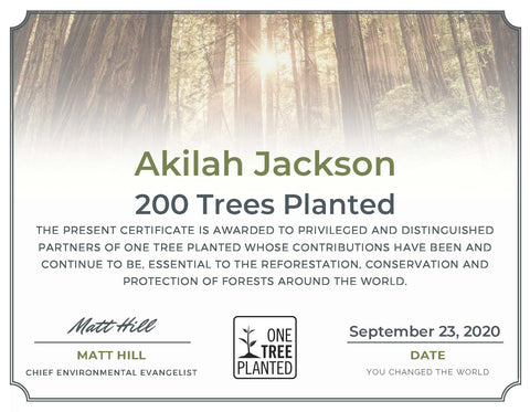Sunsum Intention Candles Plants 200 Trees in September 2020