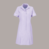 Halton Striped Classic Collar Healthcare Dress in Regular