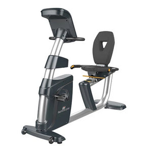 Recumbent Exercise Bike Impulse PR500