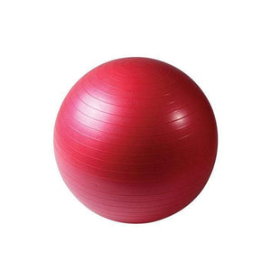 Synergy 65cm Anti-Burst Exercise Ball