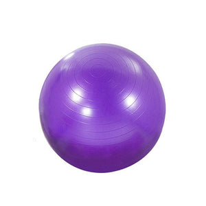 Synergy 55cm Anti-Burst Exercise Ball