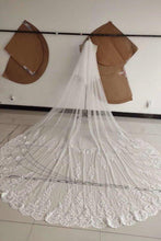 Load image into Gallery viewer, 3M Long Tulle Appliques Wedding Veils XHMPST14989