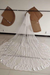 3M Long Tulle Appliques Wedding Veils XHMPST14989