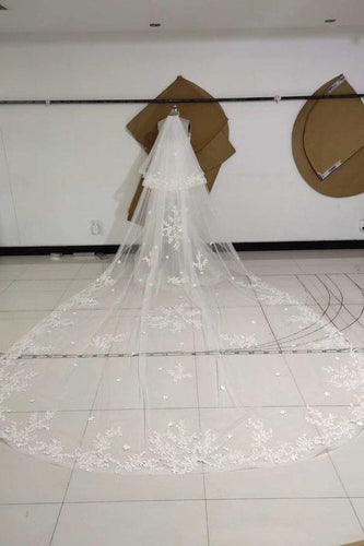 3M Long Embroidered Lace Appliques Tulle Cathedral Veil for Wedding Wedding Veils XHMPST14988