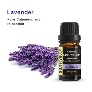 Healing Lavender Essential Oil