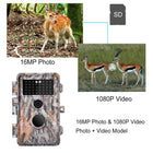 Best Game & Deer Hunting Trail Camera 16MP 1080P No Glow Night Vision Motion Activated IP66 Waterproof & Password Protected Photo & Video Model