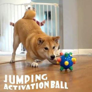 JUMPING ACTIVATION BALL FOR DOGS (CHRISTMAS DEAL)