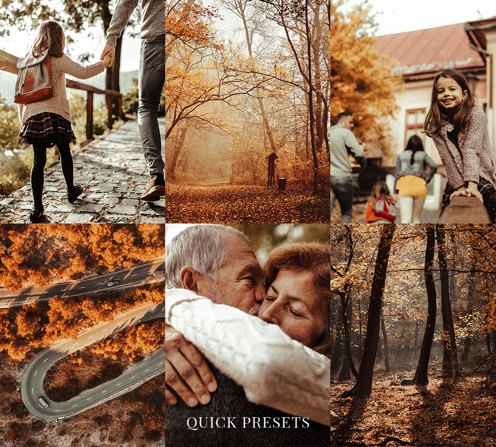 FALL (12 PRESETS)