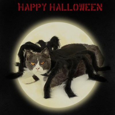 Cat Dog Halloween Spider Pet Dress Up Spider Wing Clothes for Puppies Cats Halloween Pet Cat Dog Costumes Cute Dress @25 - offloaddogsboner
