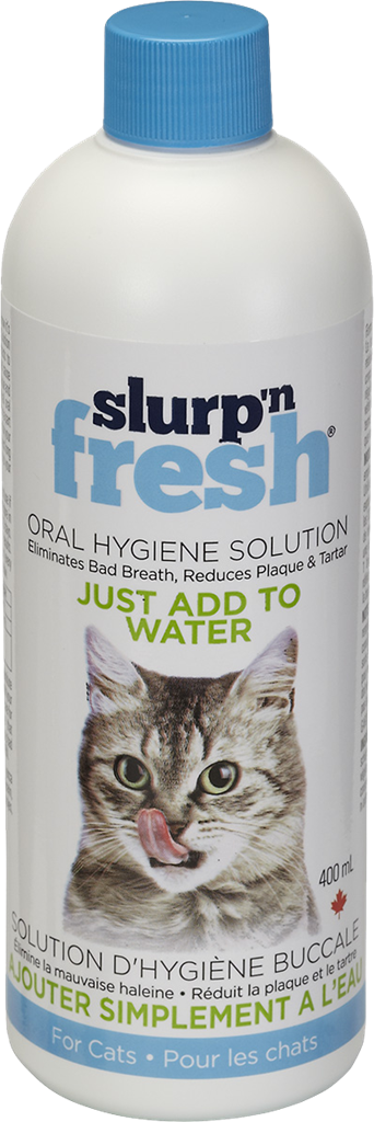 Slurp N Fresh 400ML | Cat