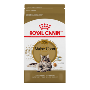 ROYAL CANIN FBN Maine Coon