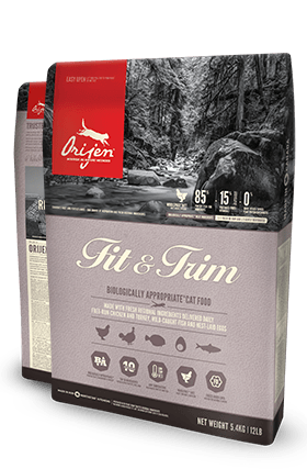 ORIJEN FIT & TRIM CAT
