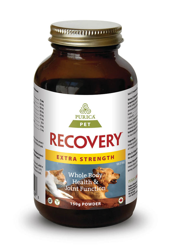 PURICA Pet Recovery-EXTRA STRENGTH (Powder)