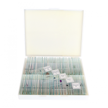 Load image into Gallery viewer, Saxon Biological (Plant & Animal ) Prepared Microscope Slides (100pcs)  (310010)