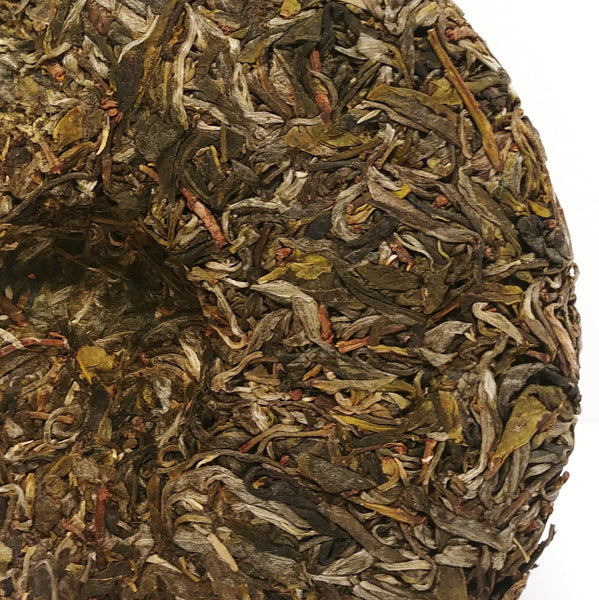 Da Xue Shan (Big Snow Mountain) Sheng Puerh, Ancient Arbor, Spring 2018