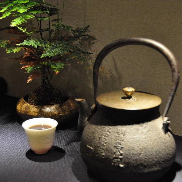 Antique Tetsubin (鐵壺) with Calligraphy