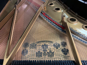 "Restored Steinway Grand Piano Model A 6'2"" Serial Number 100441 in Satin Ebony"
